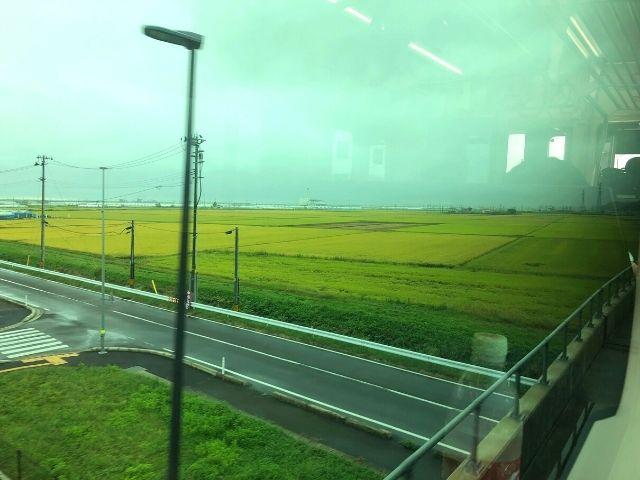 浜吉田駅以南の高架橋を走る常磐線