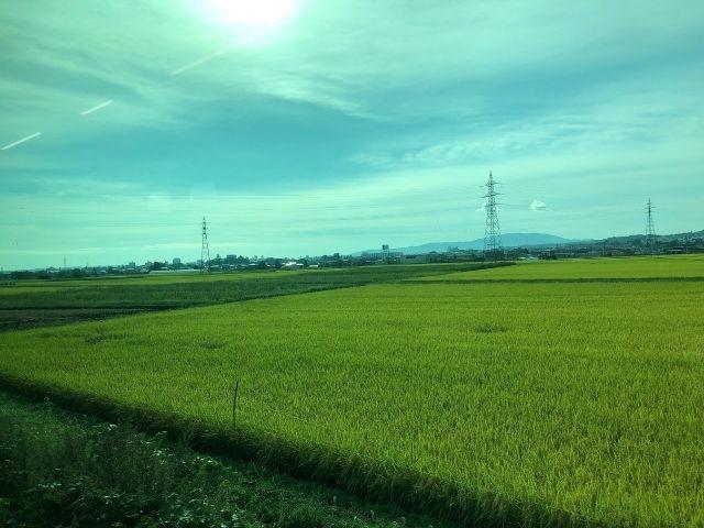 八戸線の車窓から見える田園風景