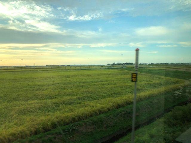庄内平野を走る特急いなほの車窓
