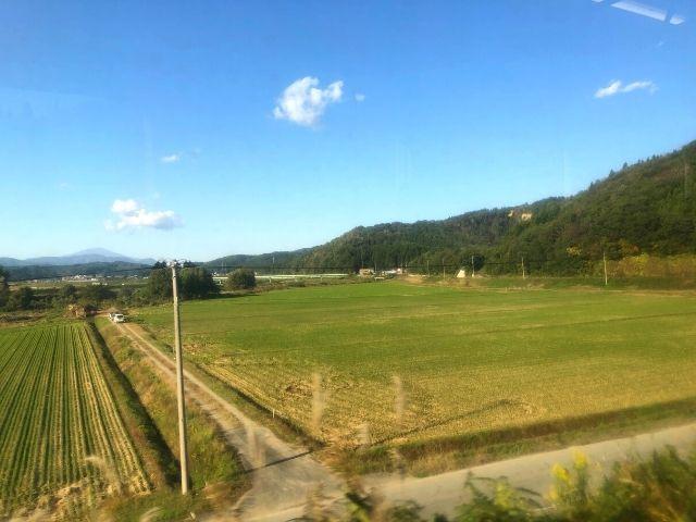 陸羽西線快速最上川の車窓から見える田園風景